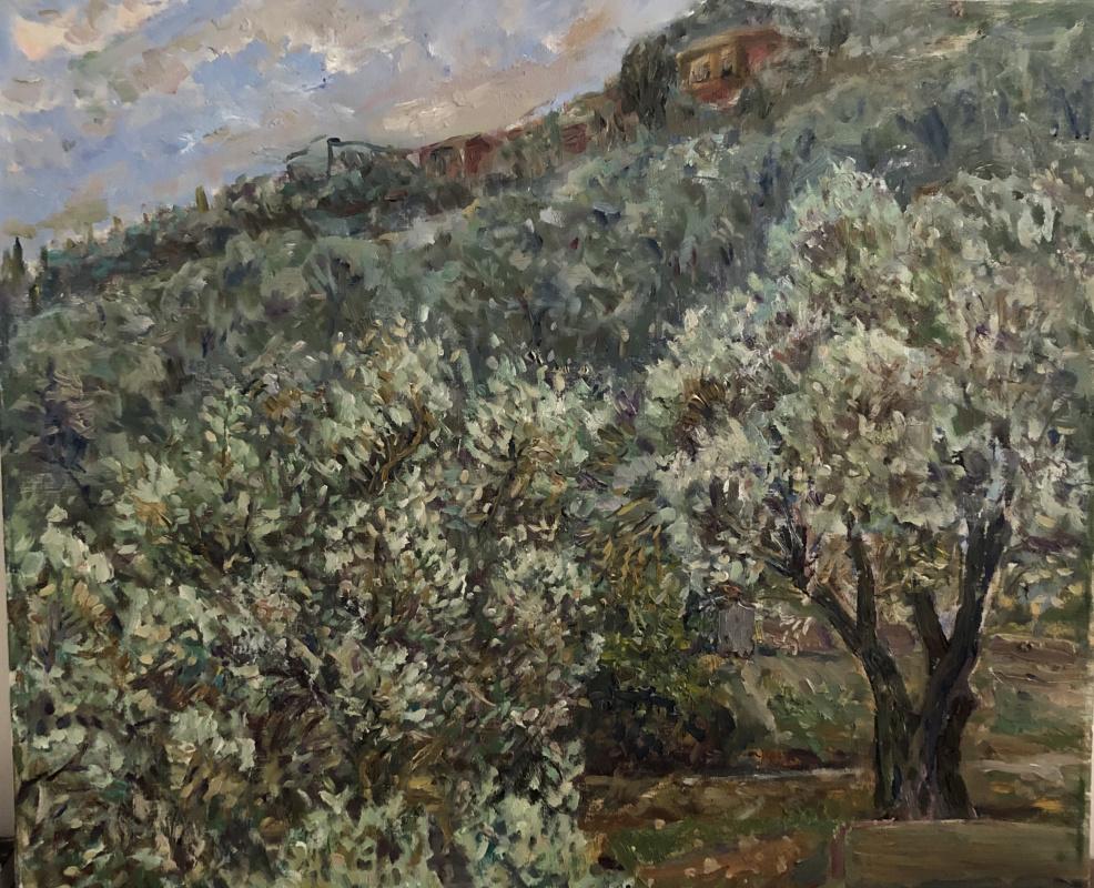 Виктория Мальшакова. Оливы на закате после дождя