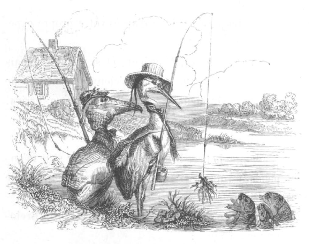 """Жан Иньяс Изидор (Жерар) Гранвиль. Я никогда еще не ловил рыбу. """"Сцены общественной и частной жизни животных"""""""
