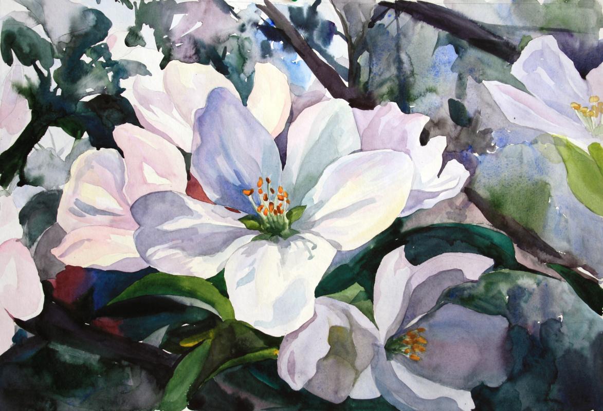 Violetta Dudnikova. Apple tree flowers