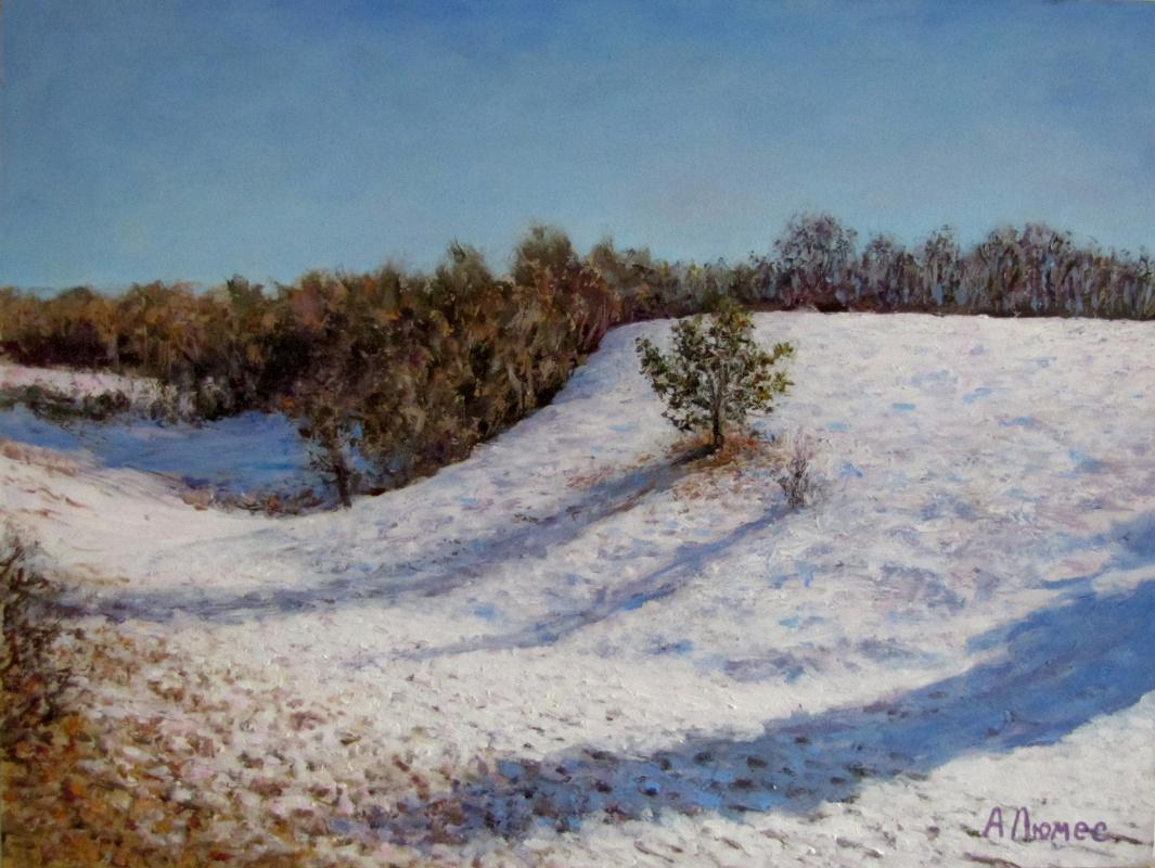 Andrew Lumez. Winter sun