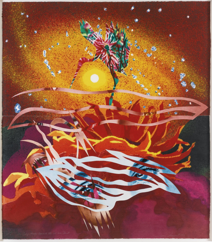 James Rosenquist. The bird of Paradise lands on the planet of hot water