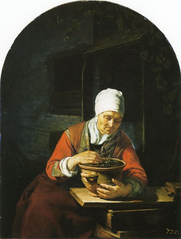 Franz van Miris the Elder. The old lady with flower pot