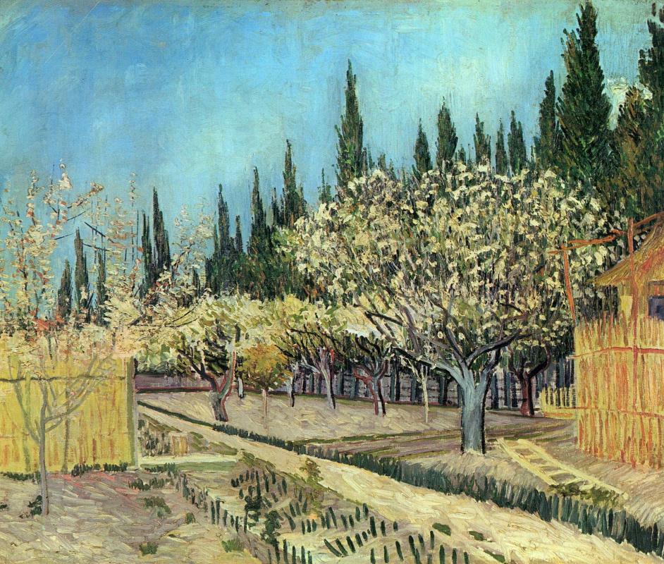 Винсент Ван Гог. Фруктовый сад в цвету в обрамлении кипарисов