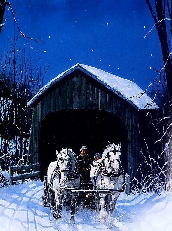 Крис Каммингс. Зимняя ночная поездка