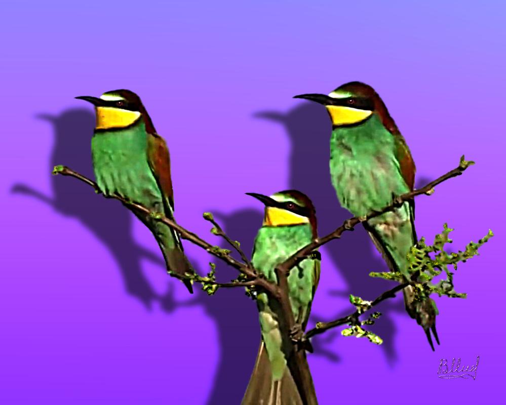 Vasiliy Mishchenko. Birds 009