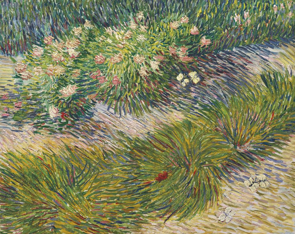 Винсент Ван Гог. Уголок сада с бабочками