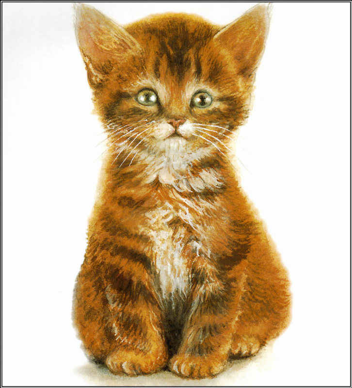 Крисси Снеллинг. Маленький котенок