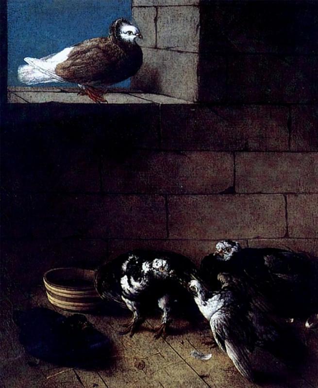 Иоган  (Иван Федорович) Фридрих Гроот. Голуби