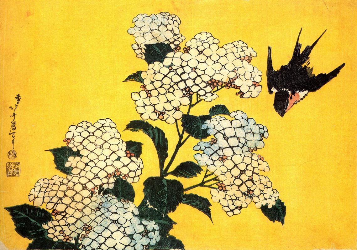 Katsushika Hokusai. Hydrangea and swallow