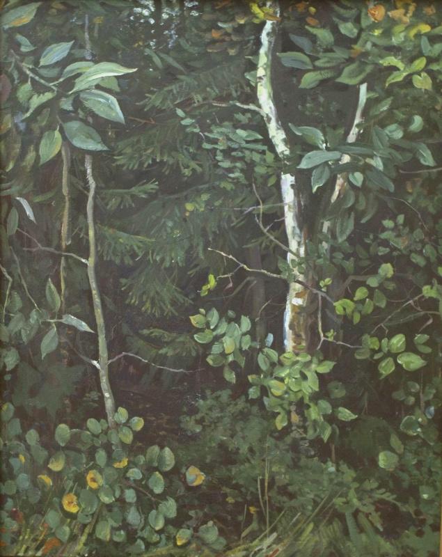 Евгений Иванович Бригадиров. В лесу