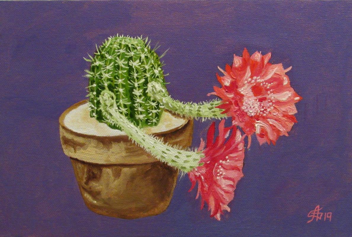 Artashes Vladimirovich Badalyan. Blooming cacti-2 - x-hardboard-m - 20x30