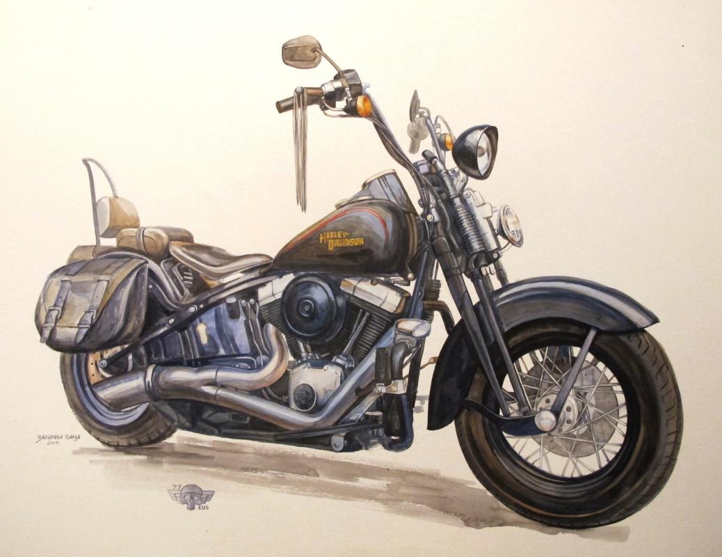 Dariya Zakharova. Harley-Davidson Cross Bones 2008 FLSTСВ