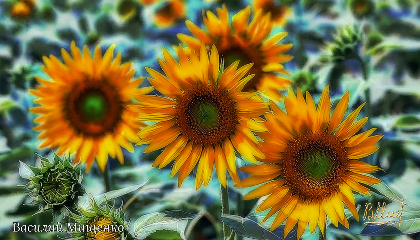 Vasiliy Mishchenko. Flowers 040