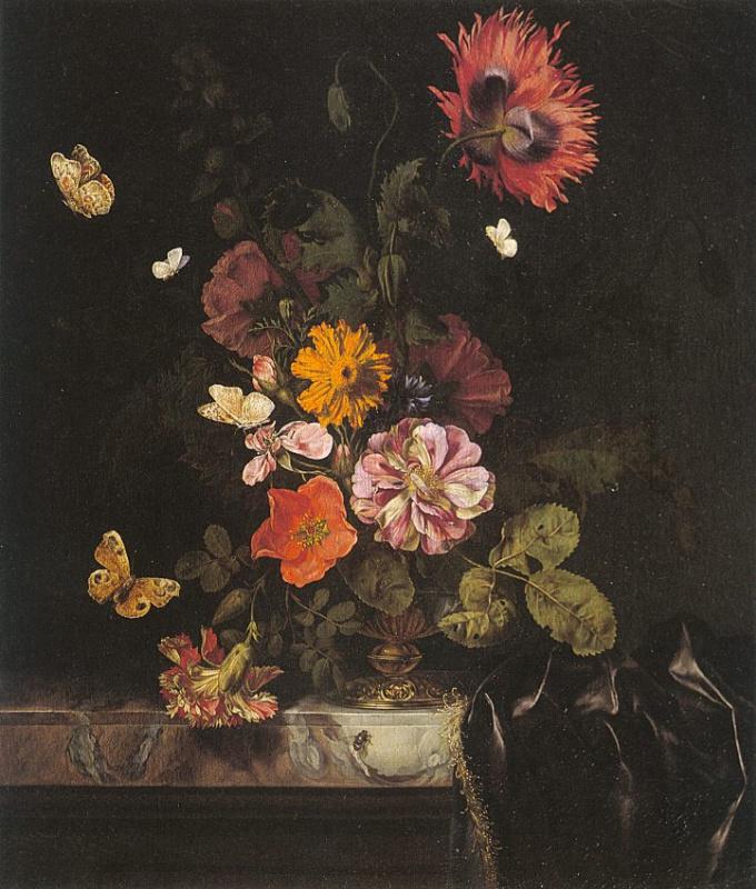 Лачтропиус. Цветы