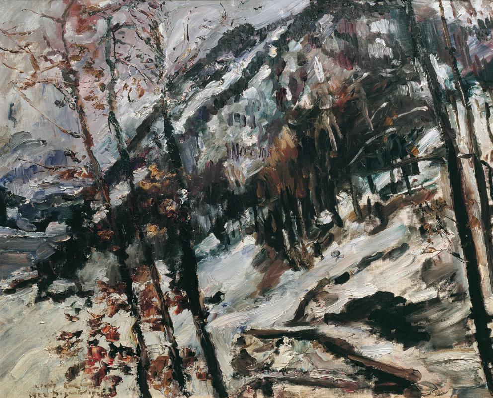 Lovis Corinth. Херцогштанд в снегу