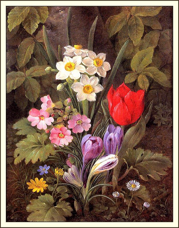 Кристин Мари Лоуманд. Красный тюльпан