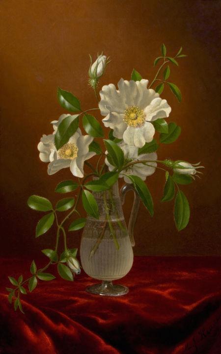 Martin Johnson Head. Cherokee roses in a glass decanter on red velvet