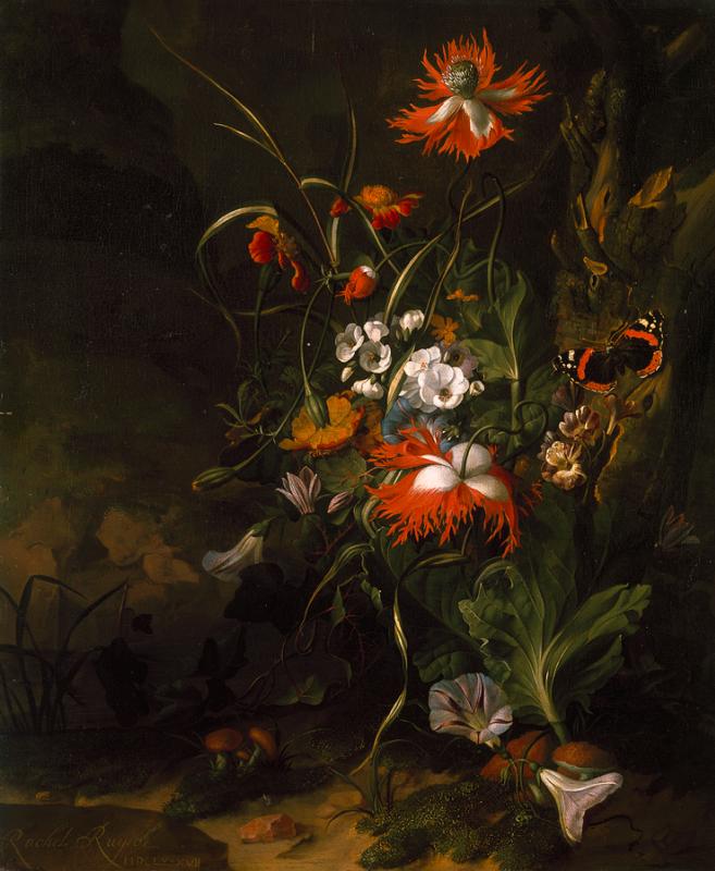 Rachelle Ruysch. Land in the forest