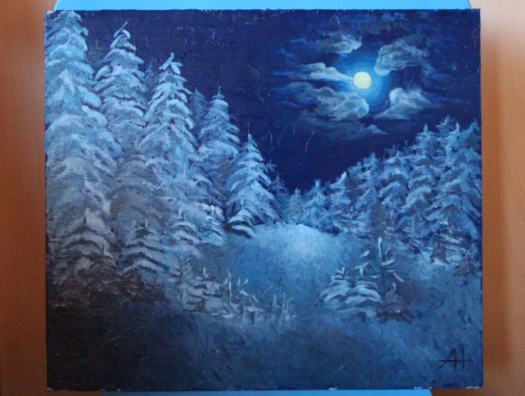 Alina Nesterova. Moonlight night