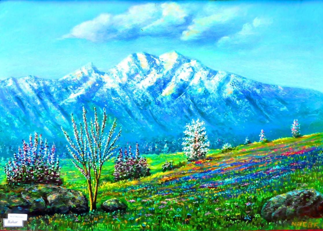 Najaf Mamedali oglu Mamedov. Spring