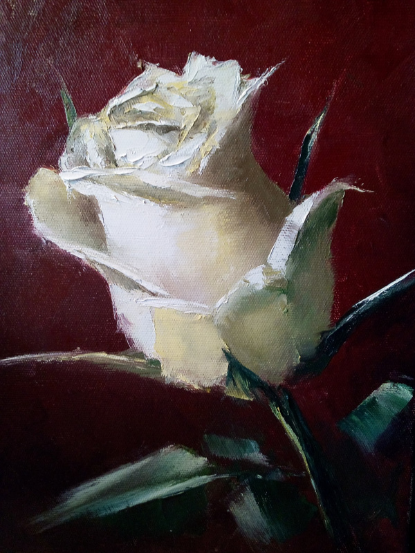 Ирина Поморова. Белая роза