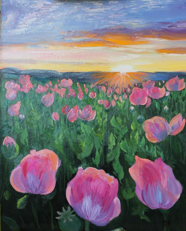 Vasilisa Viktorovna Perestoronina. Pink poppies