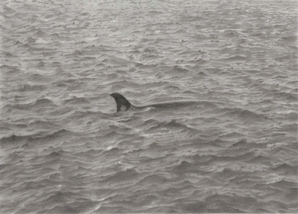 Vija Celmins. Seascape with a whale