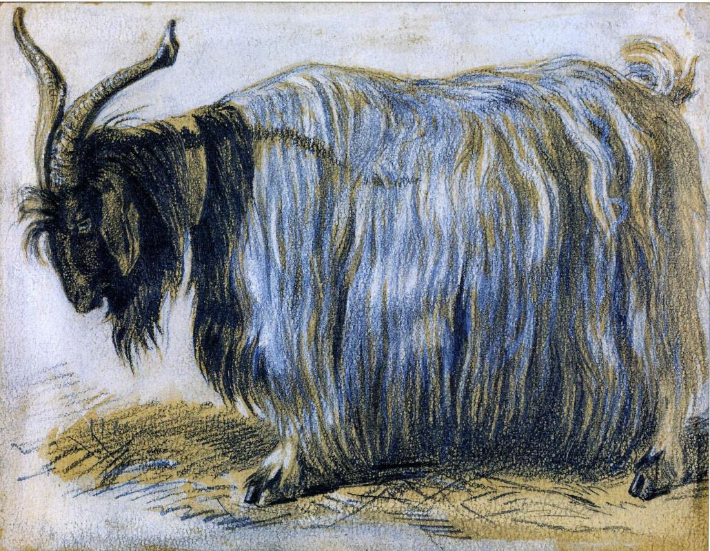 Vasily Vereshchagin. Goat