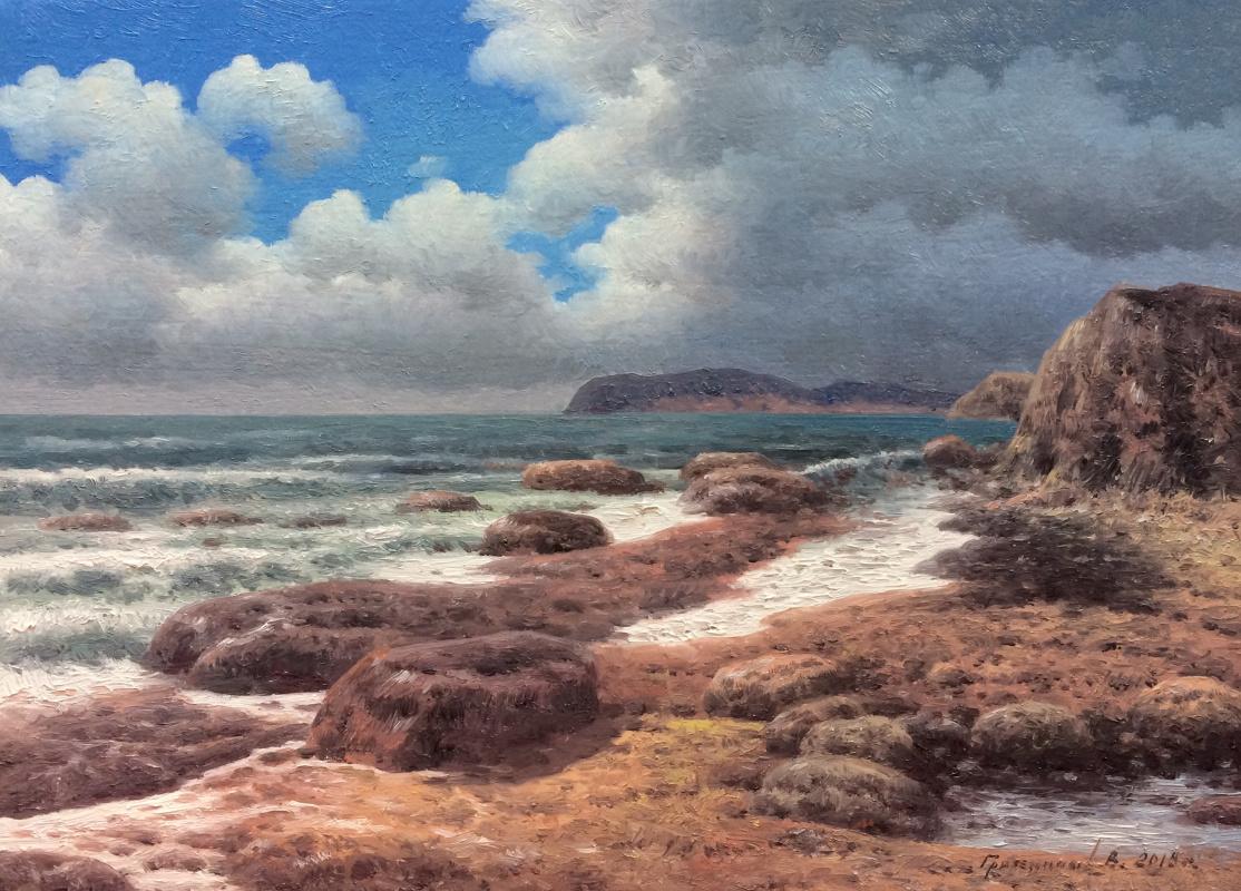 Vasily Ivanovich Gribennikov. Sea shore
