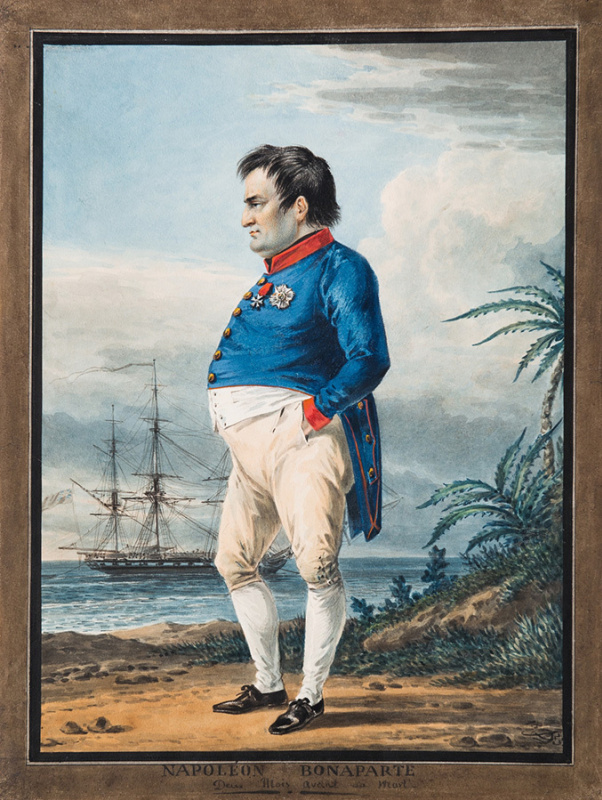 Alexander Osipovich Orel. Emperor Napoleon I Bonaparte on Saint Helena for two months before death