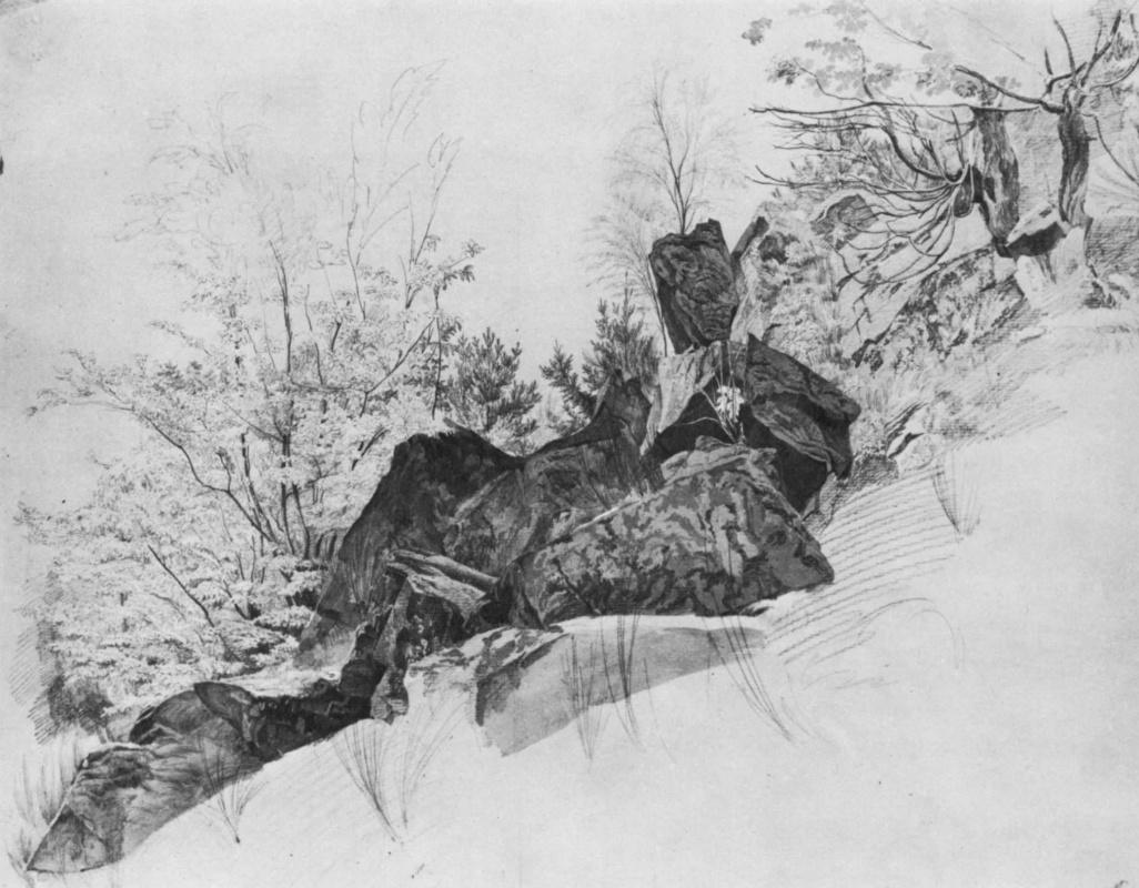 Август Генрих. Скалы и деревья: камни на первом плане