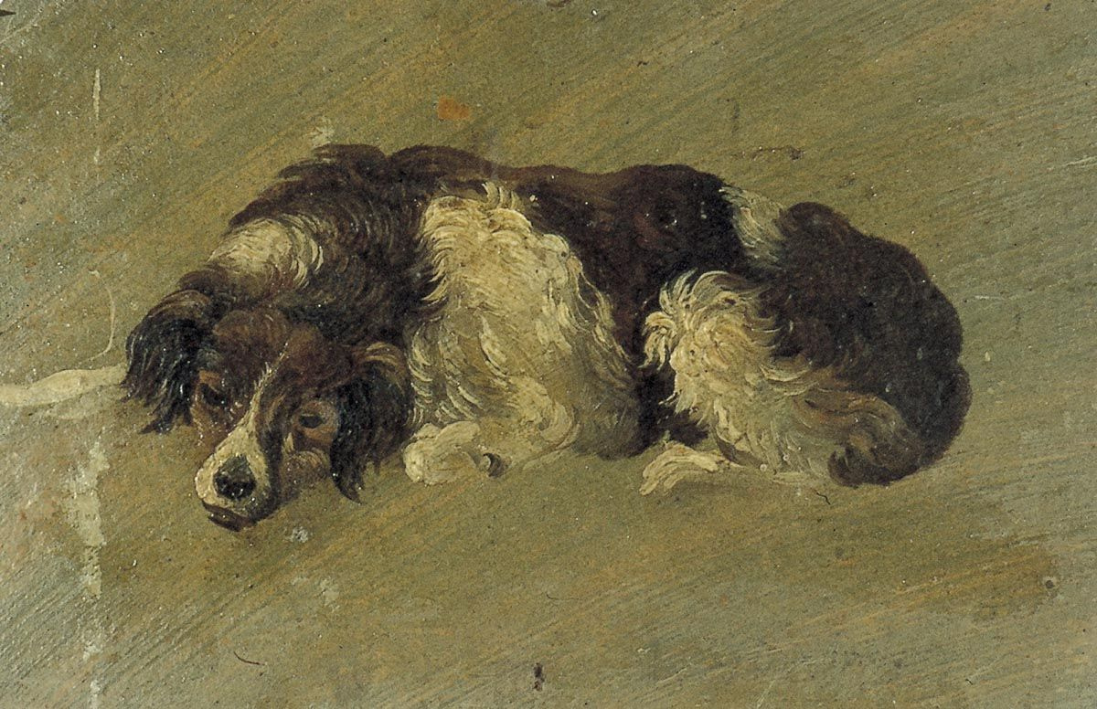 Theo van Dusburg. Dog