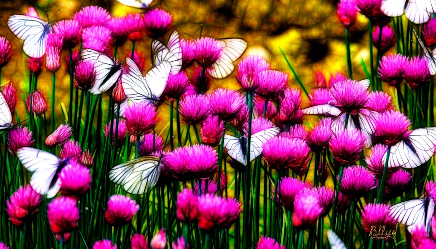 Vasiliy Mishchenko. Flowers 0133
