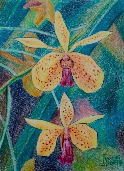 Larissa Lukaneva. Yellow Orchid