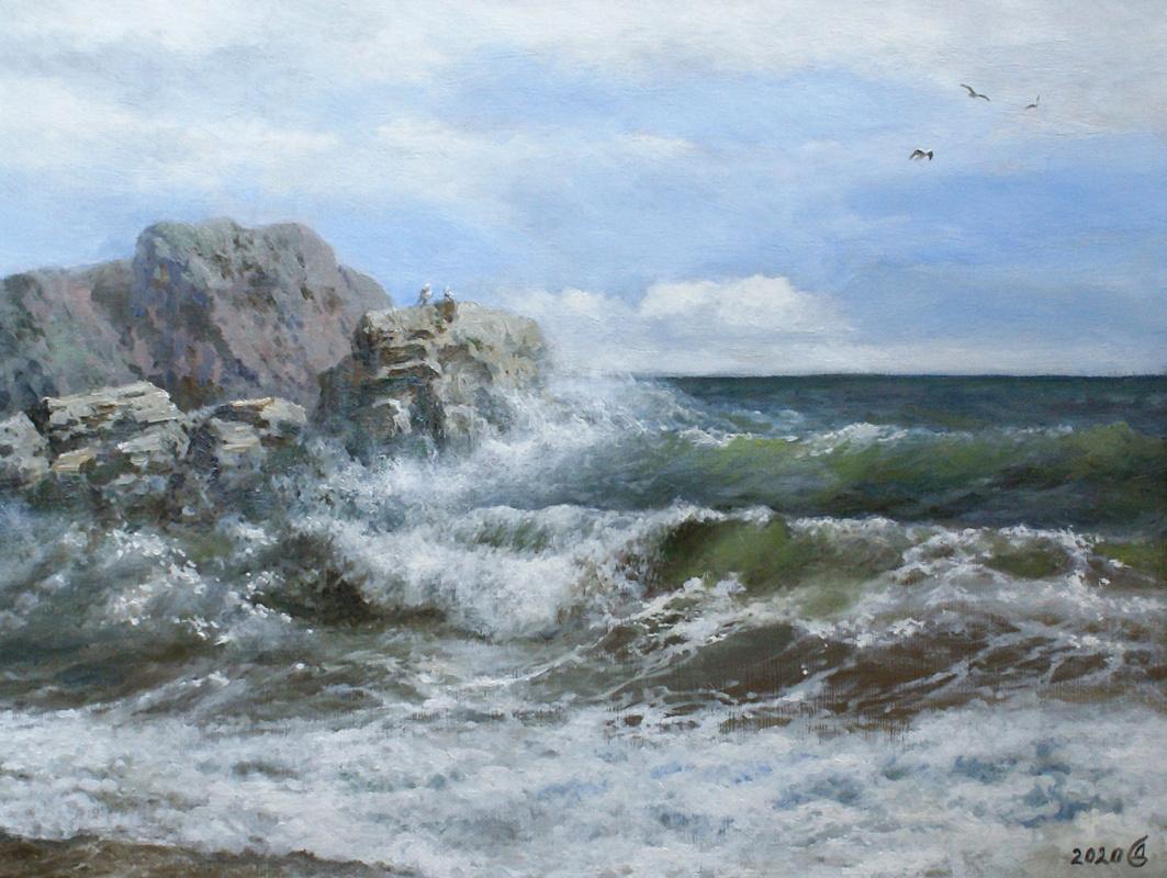 Сергей Владимирович Дорофеев. On a rocky shore