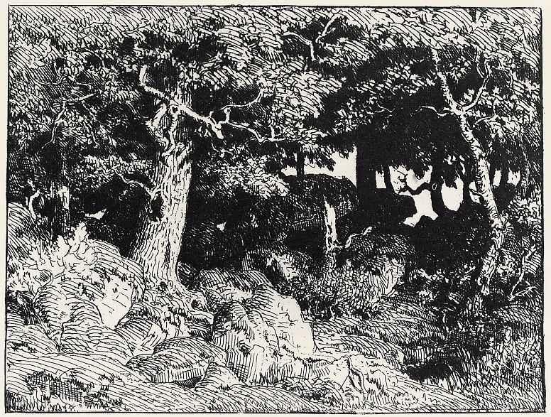 Pierre-Etienne-Theodore Rousseau. Oaks
