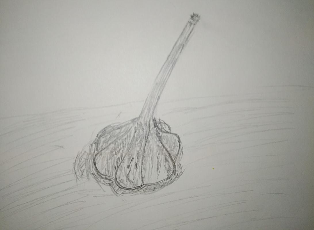 Zina Vladimirovna Parisva. Garlic