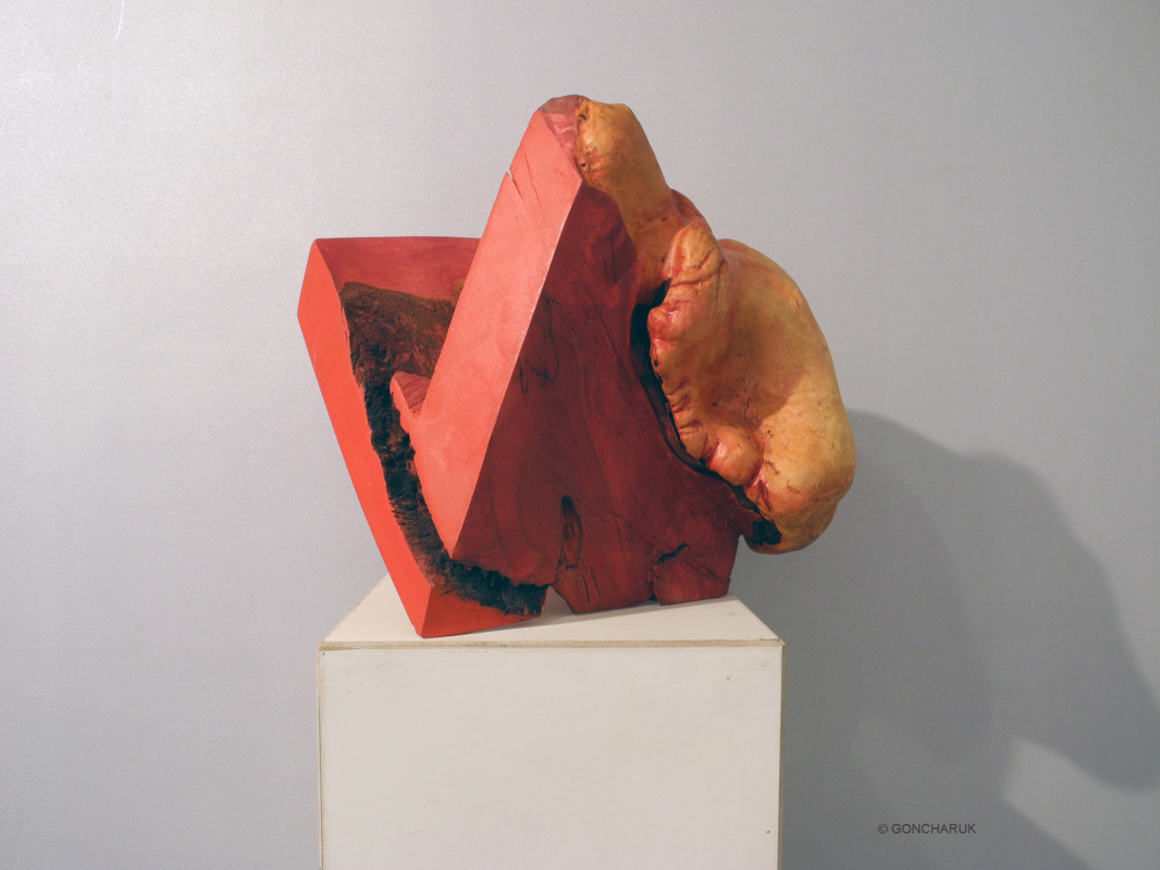 Alexander Mikhailovich Goncharuk. FORMA OUT COLOR OUT -RED. 2009