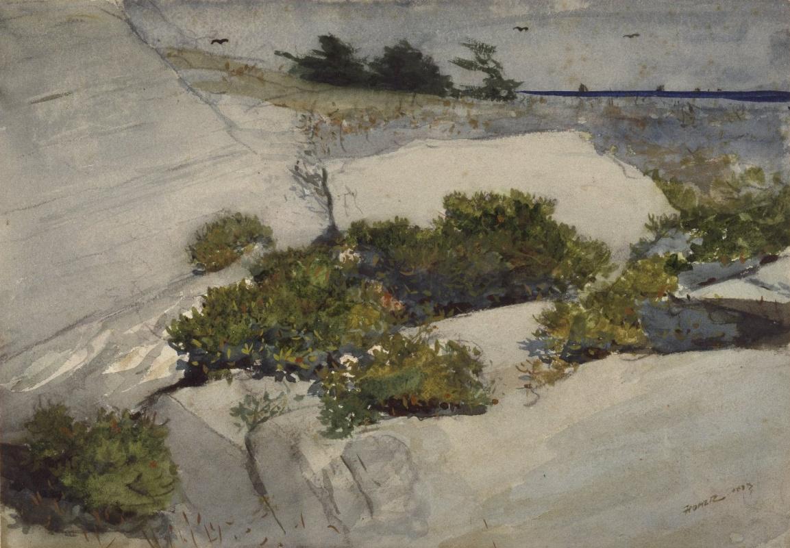 Winslow Homer. Rocks in Maine