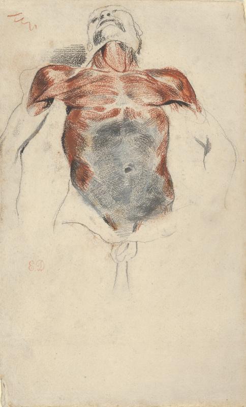 Tutorial: torso of a dead man