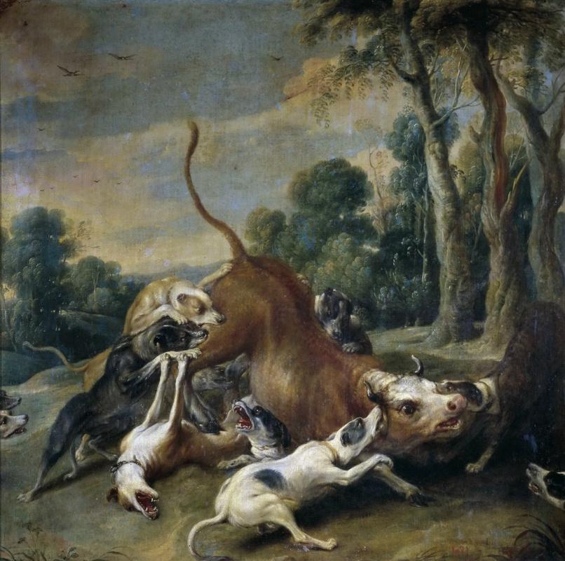 Франс Снейдерс. Загнанный бык