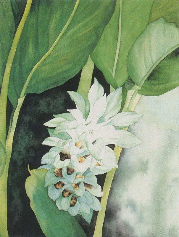 Аманда Фолгнер. Цветы