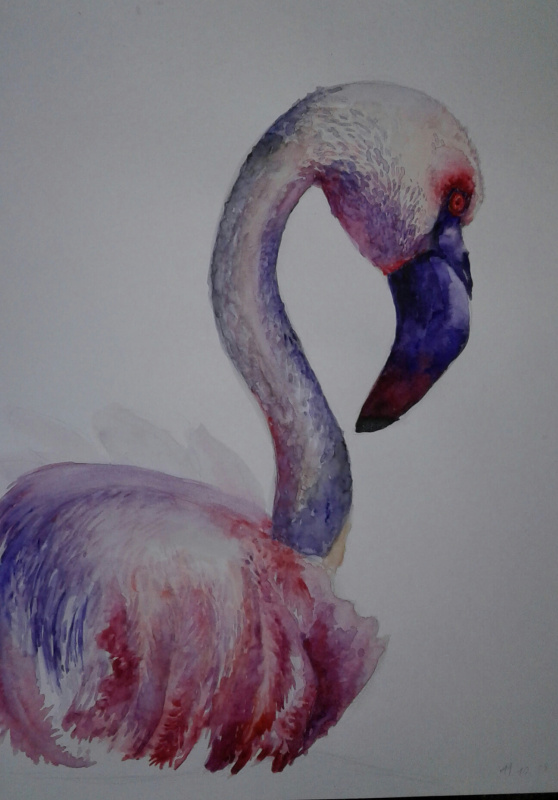 Julia Sergeevna Bochkareva. Flamingo