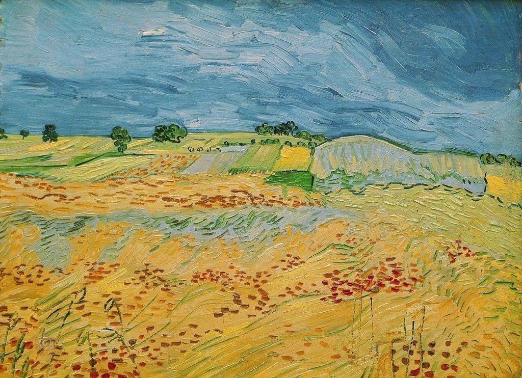 Винсент Ван Гог. Поля