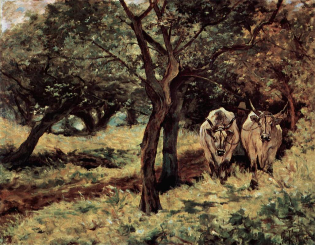 Giovanni Fattori. Two oxen in the olive grove