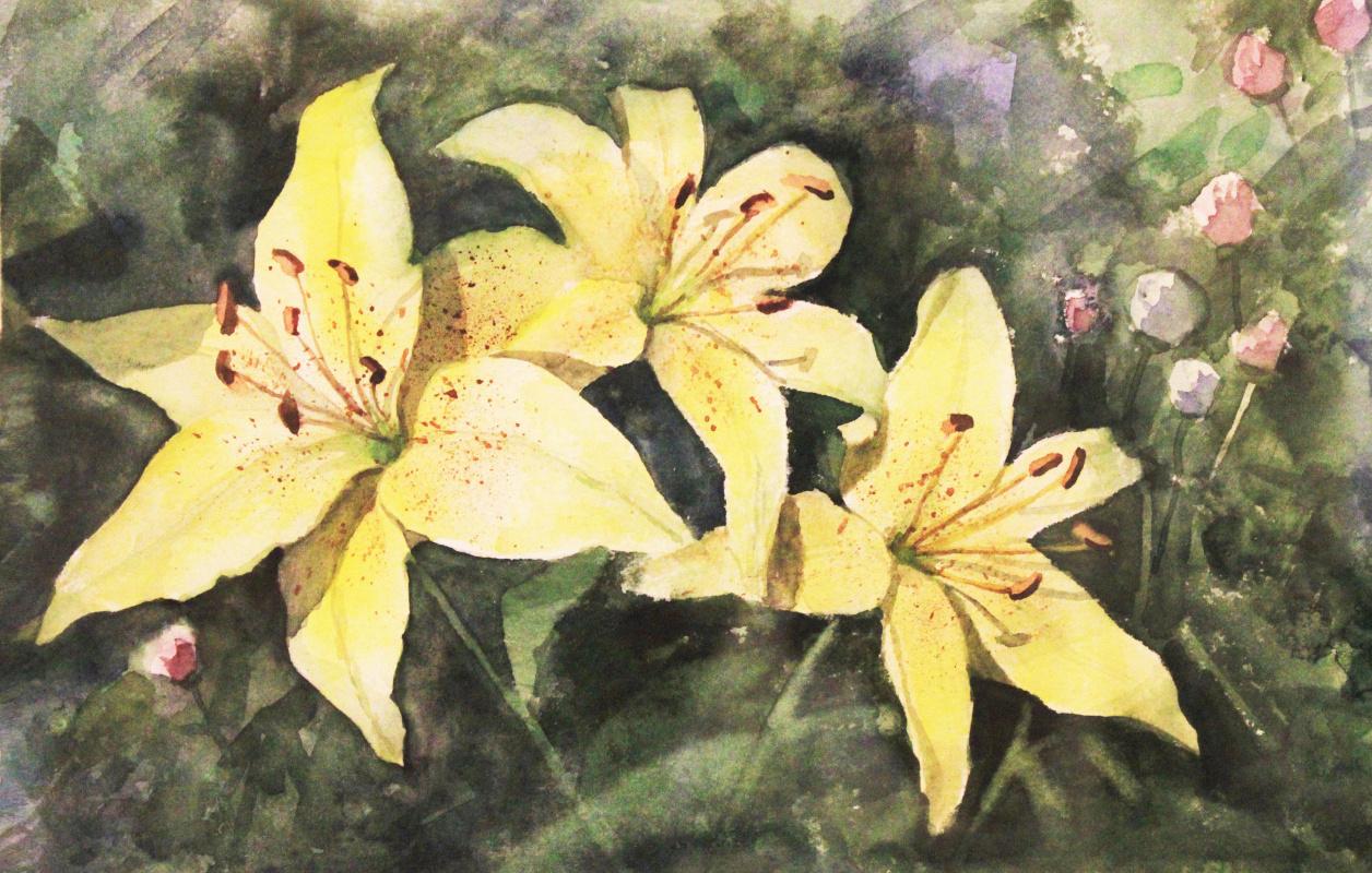 Anastasia. Yellow lilies