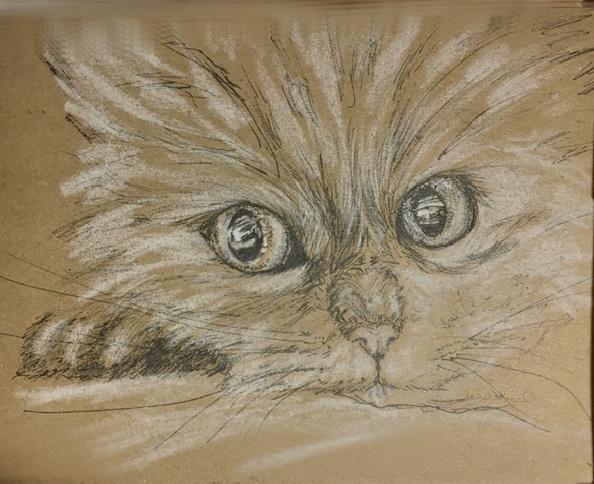 Tatiana Lagunova. Pensive cat