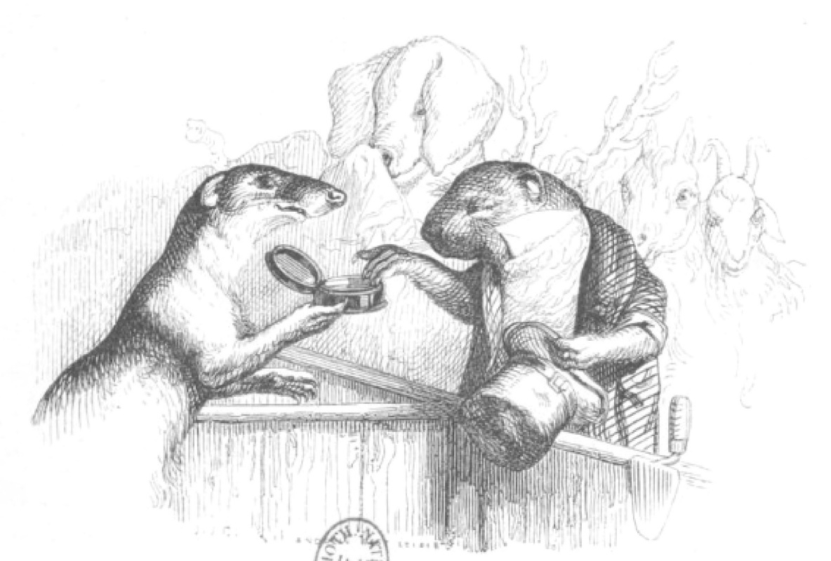 """Jean Inias Isidore (Gerard) Granville. Otter and Old Beaver: Try it, great tobacco! """"Scenes of public and private life of animals"""""""