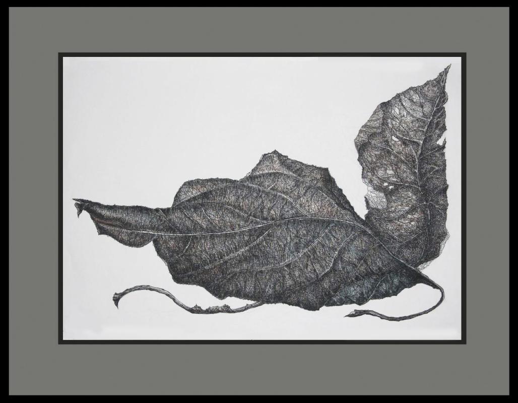 Anastasia Kalinskaya. From the dry leaves series