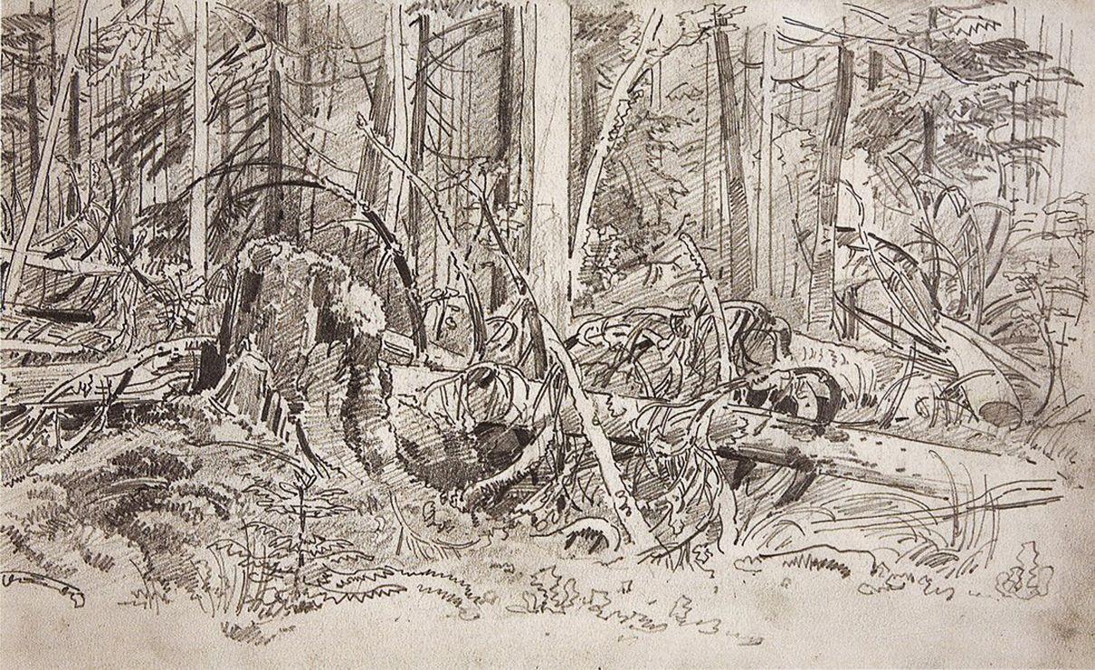 Ivan Shishkin. Forest dam